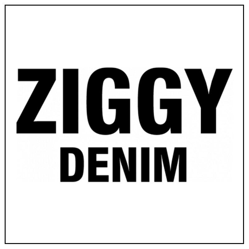 Logo e link alla marca Ziggy